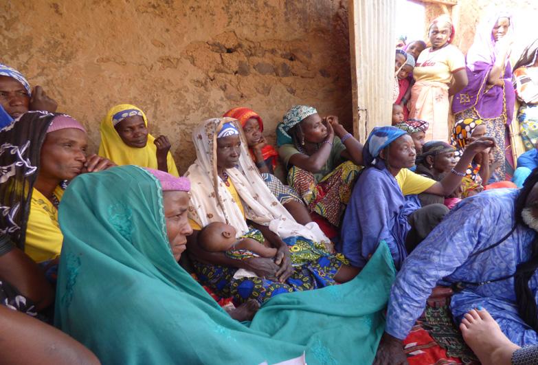 meeting of women in niger