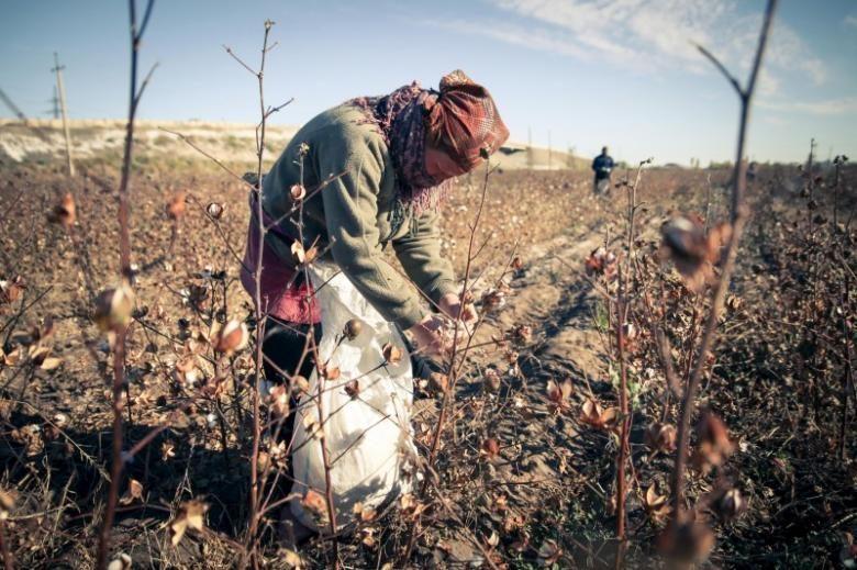 Slavery in Uzbekistan