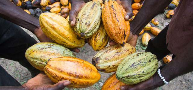 modern slavery in cocoa supply chains