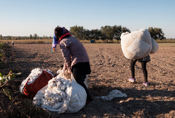 Forced labour in cotton industry in Uzbekistan