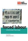 forced labour in North Korean prison camps report cover