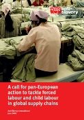 call for pan European action report cover